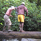 Papuan man helping Carol Masheter cross a log bridge
